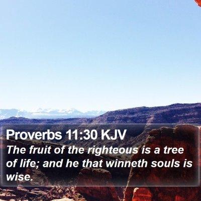 Proverbs 11:30 KJV Bible Verse Image