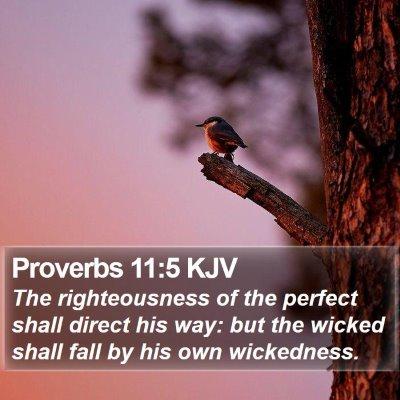 Proverbs 11:5 KJV Bible Verse Image