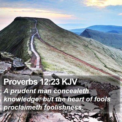 Proverbs 12:23 KJV Bible Verse Image