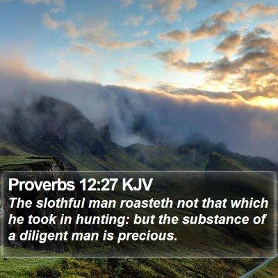 Proverbs 12:27 KJV Bible Verse Image