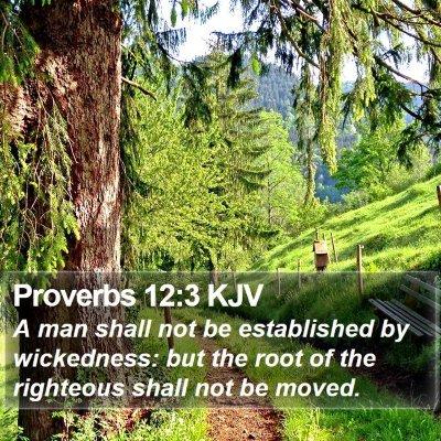Proverbs 12:3 KJV Bible Verse Image