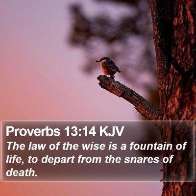 Proverbs 13:14 KJV Bible Verse Image