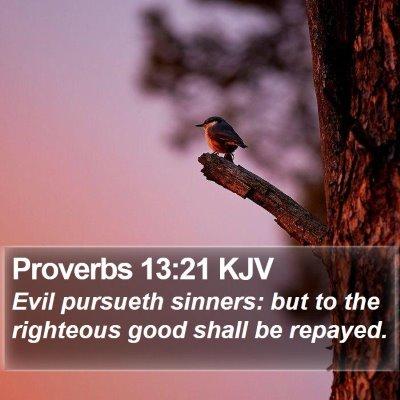 Proverbs 13:21 KJV Bible Verse Image