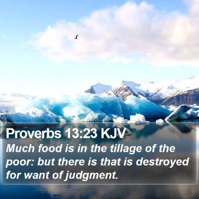 Proverbs 13:23 KJV Bible Verse Image