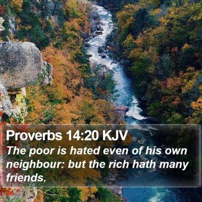 Proverbs 14:20 KJV Bible Verse Image