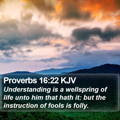 Proverbs 16:22 KJV Bible Verse Image