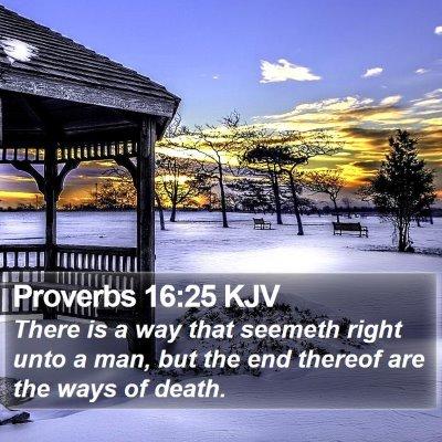 Proverbs 16:25 KJV Bible Verse Image