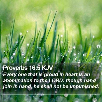 Proverbs 16:5 KJV Bible Verse Image