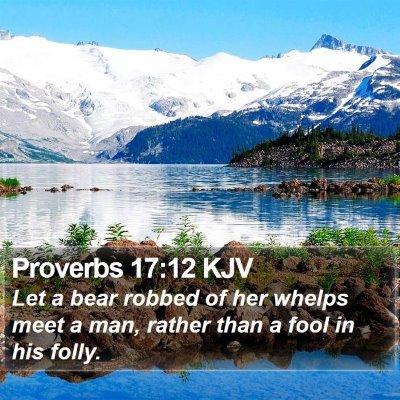 Proverbs 17:12 KJV Bible Verse Image