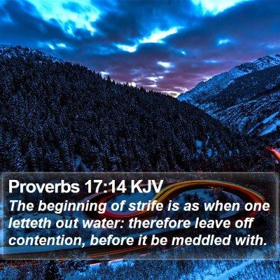 Proverbs 17:14 KJV Bible Verse Image