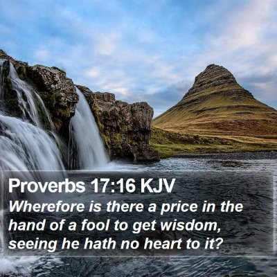 Proverbs 17:16 KJV Bible Verse Image