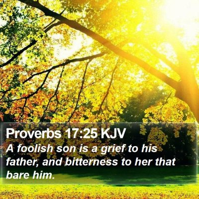 Proverbs 17:25 KJV Bible Verse Image