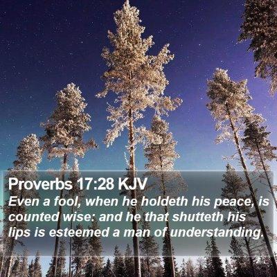 Proverbs 17:28 KJV Bible Verse Image