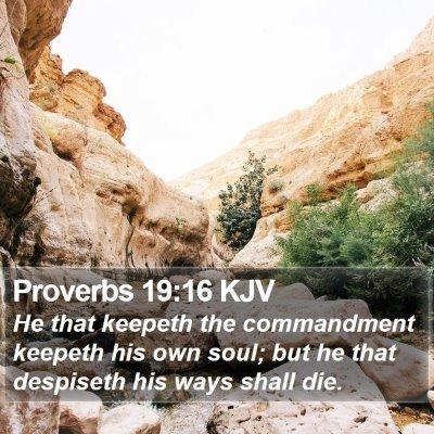 Proverbs 19:16 KJV Bible Verse Image