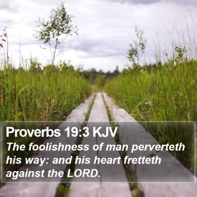 Proverbs 19:3 KJV Bible Verse Image