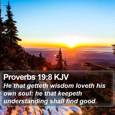 Proverbs 19:8 KJV Bible Verse Image