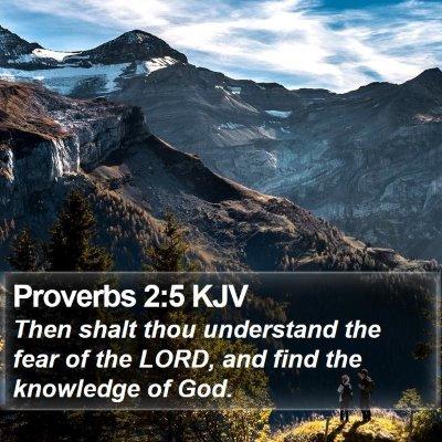 Proverbs 2:5 KJV Bible Verse Image