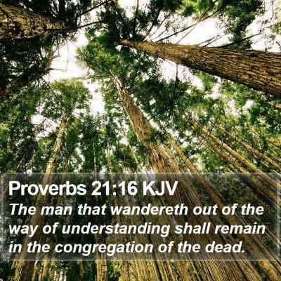 Proverbs 21:16 KJV Bible Verse Image