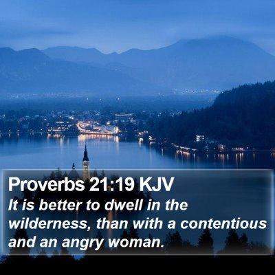 Proverbs 21:19 KJV Bible Verse Image