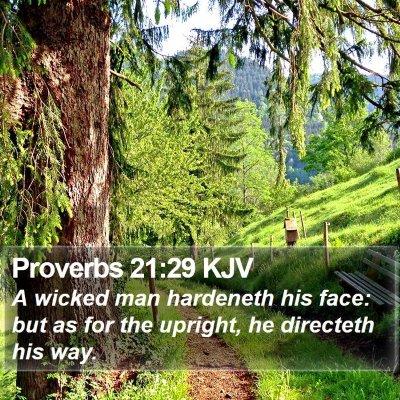 Proverbs 21:29 KJV Bible Verse Image