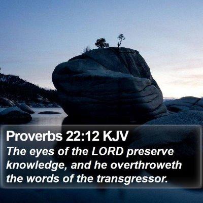 Proverbs 22:12 KJV Bible Verse Image
