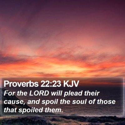 Proverbs 22:23 KJV Bible Verse Image