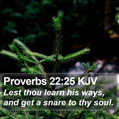Proverbs 22:25 KJV Bible Verse Image