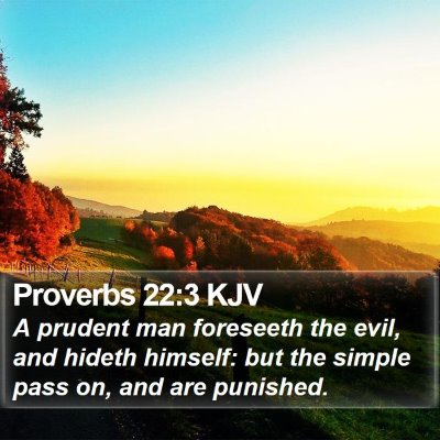 Proverbs 22:3 KJV Bible Verse Image