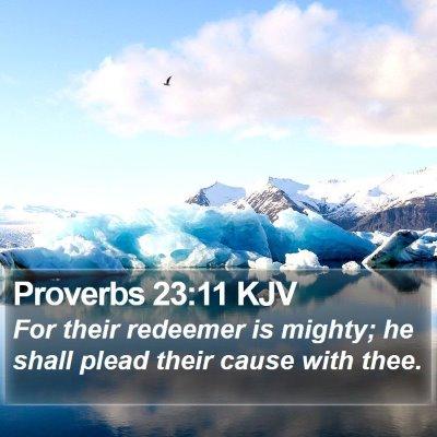 Proverbs 23:11 KJV Bible Verse Image