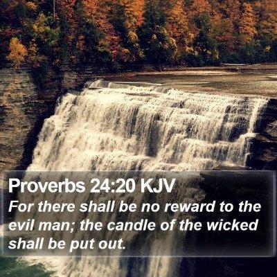 Proverbs 24:20 KJV Bible Verse Image