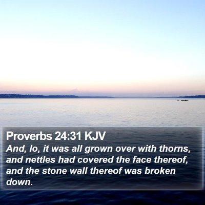 Proverbs 24:31 KJV Bible Verse Image