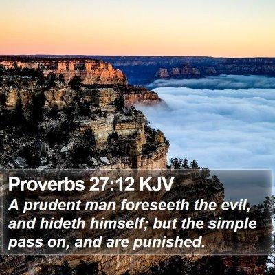 Proverbs 27:12 KJV Bible Verse Image
