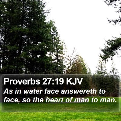 Proverbs 27:19 KJV Bible Verse Image