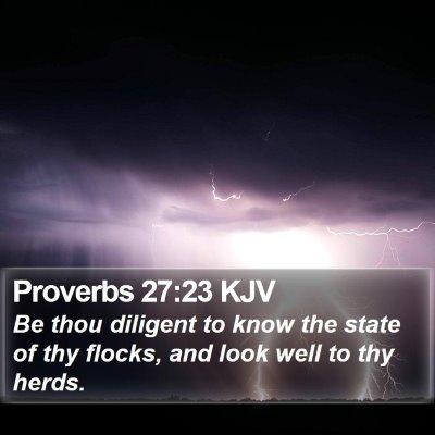 Proverbs 27:23 KJV Bible Verse Image