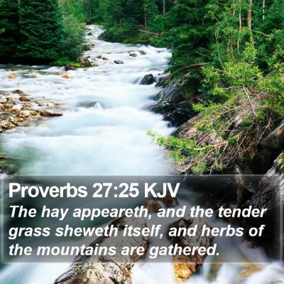 Proverbs 27:25 KJV Bible Verse Image