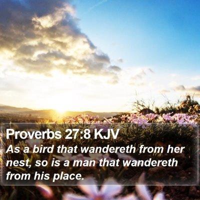 Proverbs 27:8 KJV Bible Verse Image