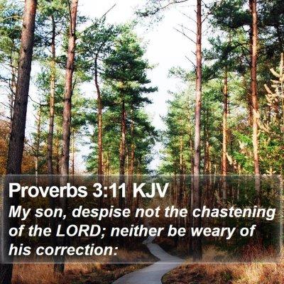 Proverbs 3:11 KJV Bible Verse Image