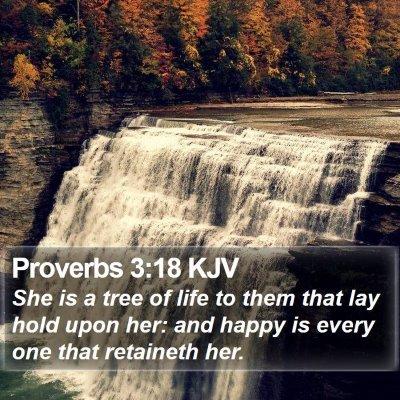 Proverbs 3:18 KJV Bible Verse Image