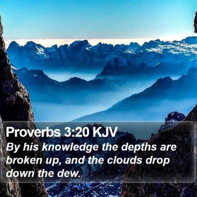 Proverbs 3:20 KJV Bible Verse Image