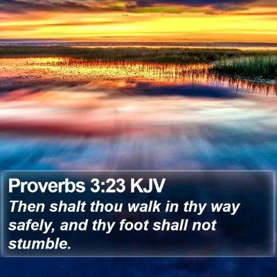 Proverbs 3:23 KJV Bible Verse Image