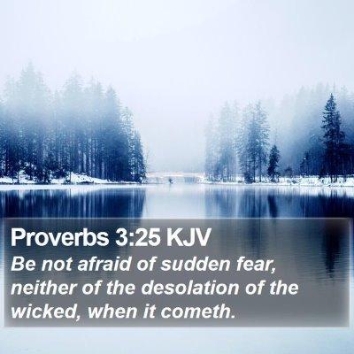 Proverbs 3:25 KJV Bible Verse Image