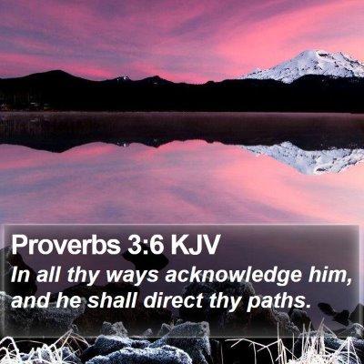 Proverbs 3:6 KJV Bible Verse Image