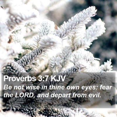 Proverbs 3:7 KJV Bible Verse Image