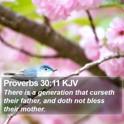 Proverbs 30:11 KJV Bible Verse Image