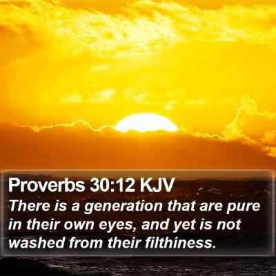 Proverbs 30:12 KJV Bible Verse Image