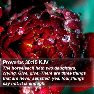 Proverbs 30:15 KJV Bible Verse Image