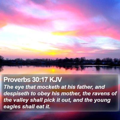 Proverbs 30:17 KJV Bible Verse Image