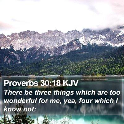 Proverbs 30:18 KJV Bible Verse Image