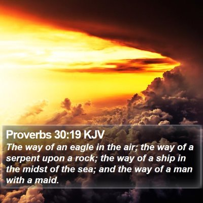 Proverbs 30:19 KJV Bible Verse Image