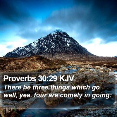 Proverbs 30:29 KJV Bible Verse Image